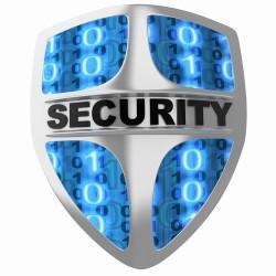 secure-it1-250x250