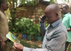 Mali based insurtech startup OKO Finance helps rural farmers access crop insurance innovation